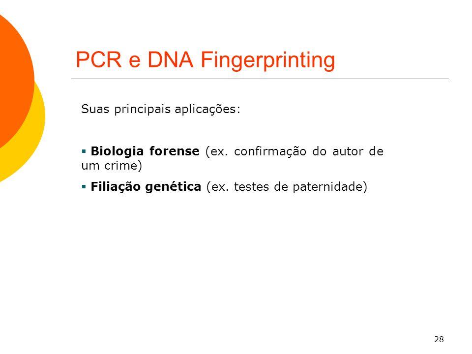 28 PCR e DNA Fingerprinting Suas principais aplicações: Biologia forense (ex. confirmação do autor de um crime) Filiação genética (ex. testes de pater