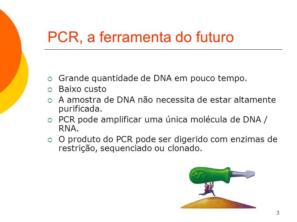 3 PCR, a ferramenta do futuro Grande quantidade de DNA em pouco tempo. Baixo custo A amostra de DNA não necessita de estar altamente purificada. PCR p