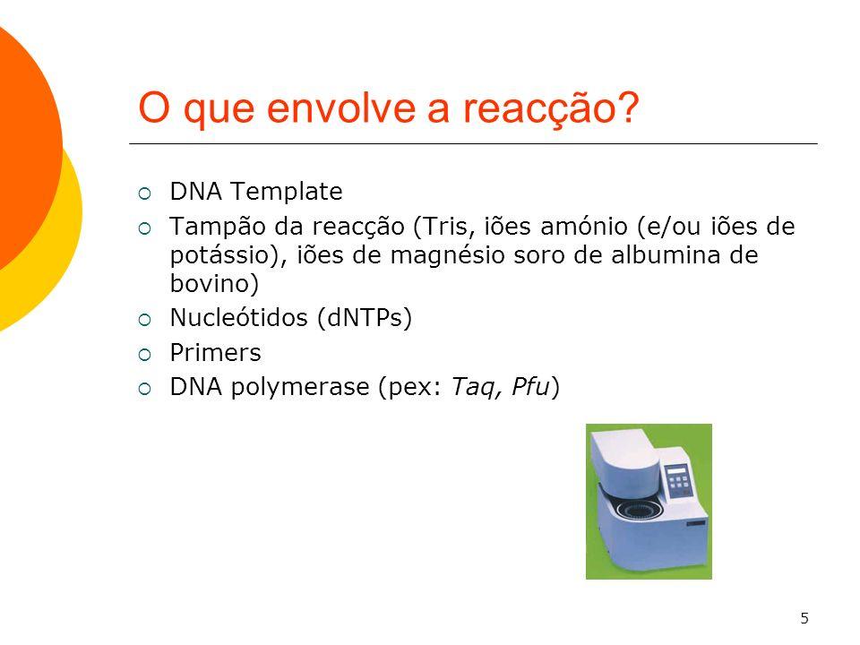 5 O que envolve a reacção? DNA Template Tampão da reacção (Tris, iões amónio (e/ou iões de potássio), iões de magnésio soro de albumina de bovino) Nuc