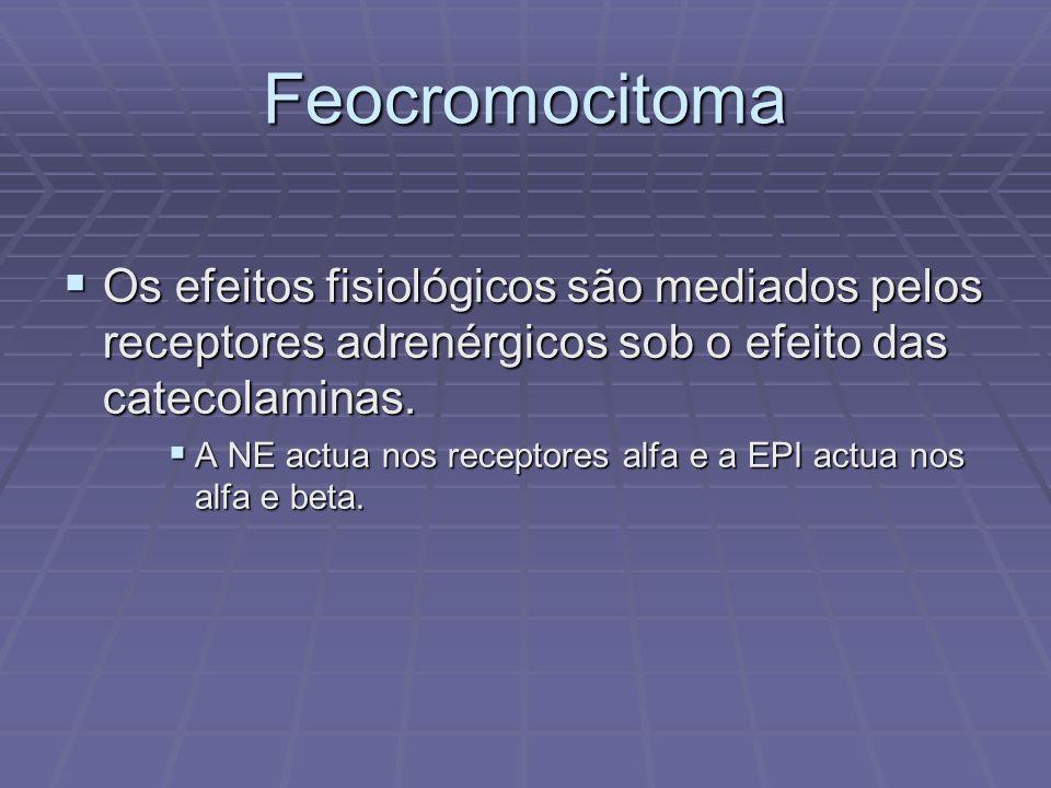 Feocromocitoma Os efeitos fisiológicos são mediados pelos receptores adrenérgicos sob o efeito das catecolaminas. Os efeitos fisiológicos são mediados