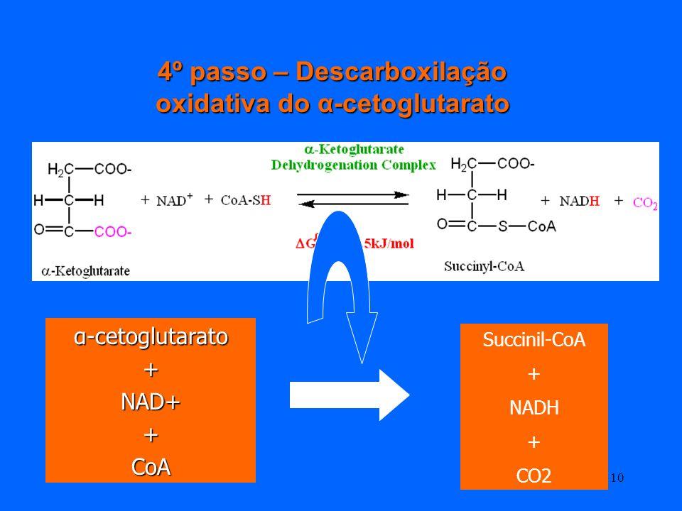 9 É a primeira de duas descarboxilações oxidativas do Ciclo de Krebs É a primeira de duas descarboxilações oxidativas do Ciclo de Krebs