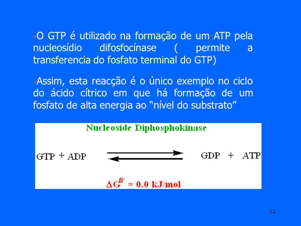 11 5º passo – Fosforilação ao nível do substrato Formação de uma ligação fosfato de elevada energia a partir de Succinil CoA