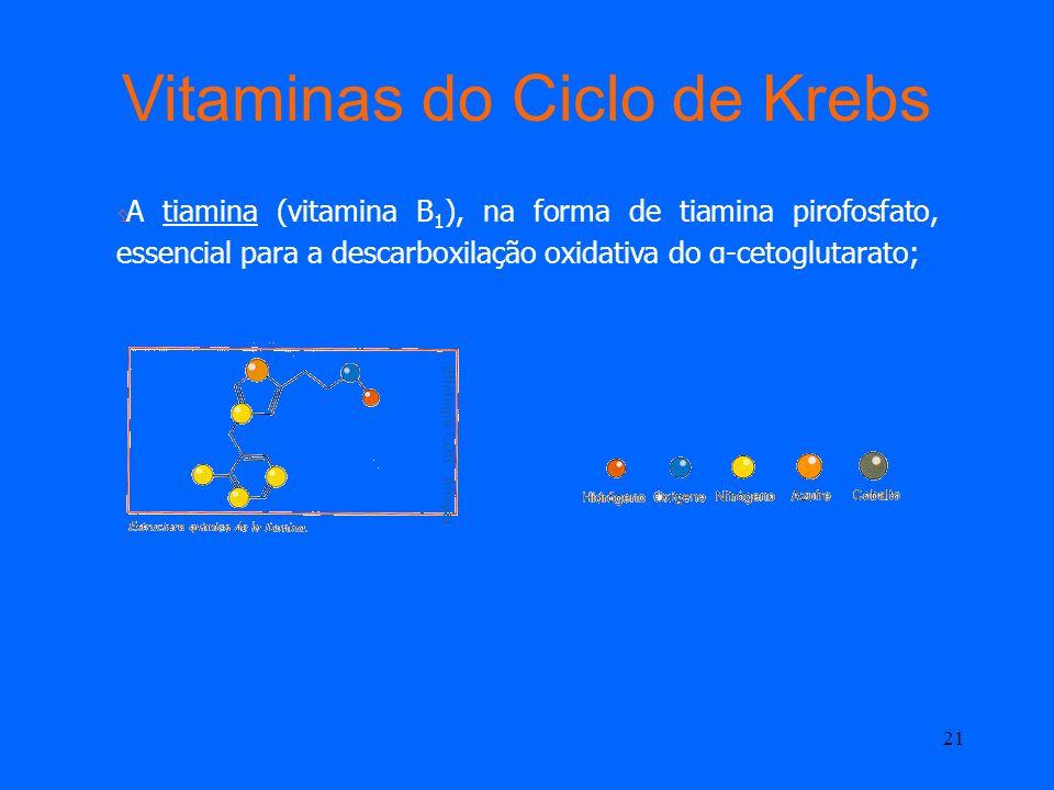 20 Vitaminas do Ciclo de Krebs O ácido pantoténico (vitamina B 5 ), fonte de coenzima A existente, nomeadamente, na acetil-CoA.