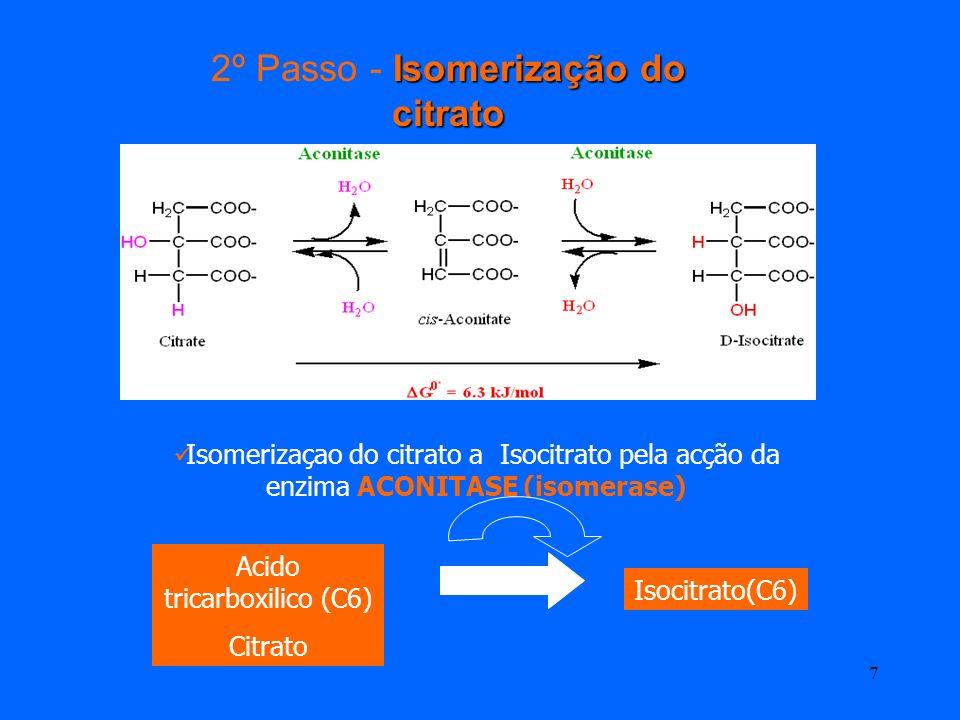 6 1º Passo -Condensação Condensação do Oxaloacetato com Acetil CoA e formação do citrato pela acção da enzima SINTASE DO CITRATO 1 molécula de Acetil
