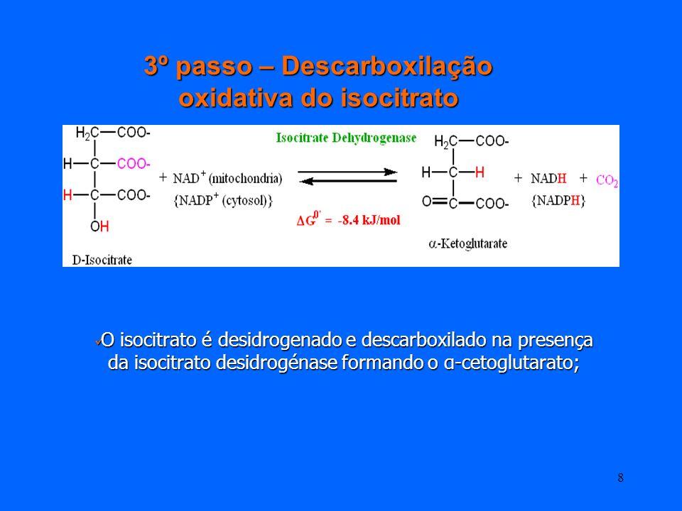 7 Isomerização do citrato 2º Passo - Isomerização do citrato Isomerizaçao do citrato a Isocitrato pela acção da enzima ACONITASE (isomerase) Acido tri