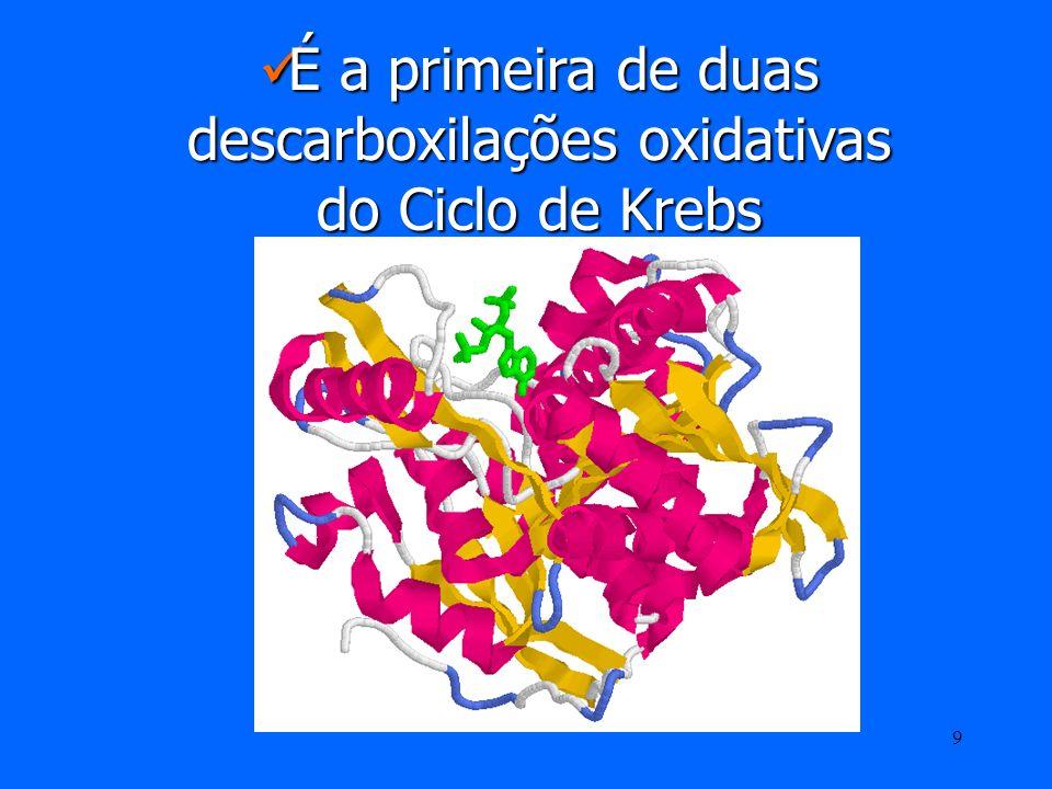 8 3º passo – Descarboxilação oxidativa do isocitrato O isocitrato é desidrogenado e descarboxilado na presença da isocitrato desidrogénase formando o