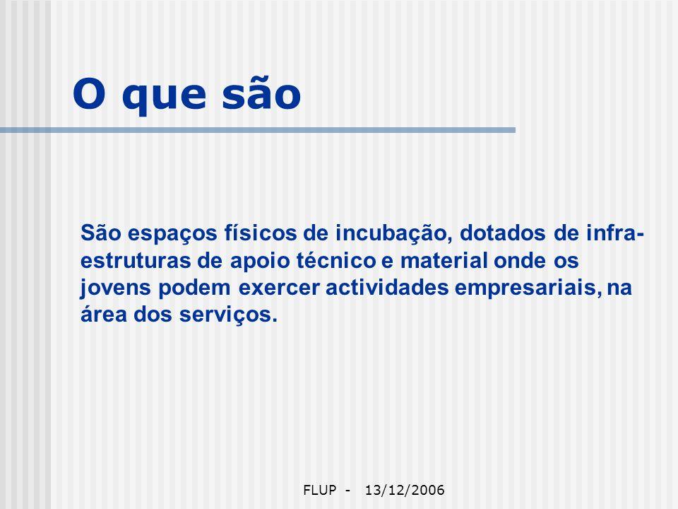 FLUP - 13/12/2006 O que são São espaços físicos de incubação, dotados de infra- estruturas de apoio técnico e material onde os jovens podem exercer actividades empresariais, na área dos serviços.
