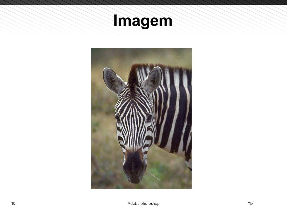 10 TM Adobe photoshop Imagem