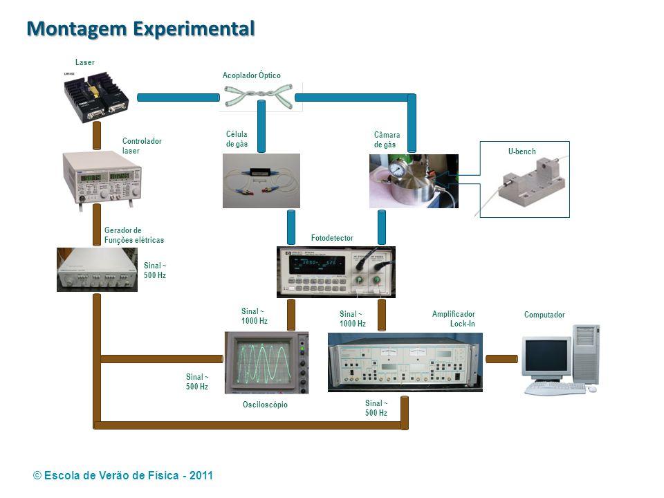 © Escola de Verão de Física - 2011 Montagem Experimental Laser Acoplador Óptico Célula de gás Câmara de gás U-bench Fotodetector Controlador laser Ger