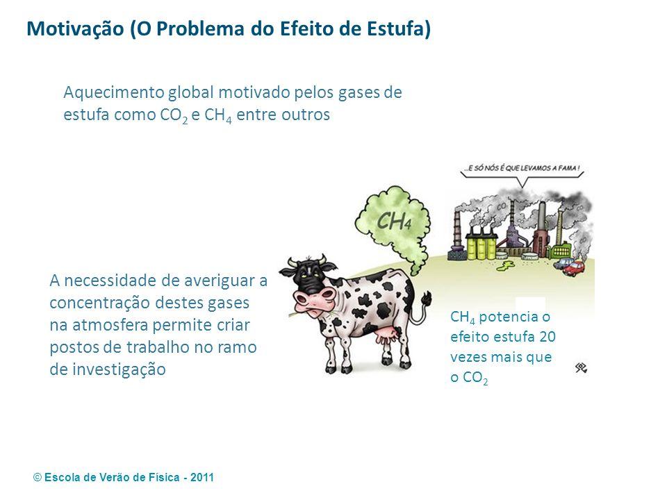 © Escola de Verão de Física - 2011 Motivação (O Problema do Efeito de Estufa) A necessidade de averiguar a concentração destes gases na atmosfera perm