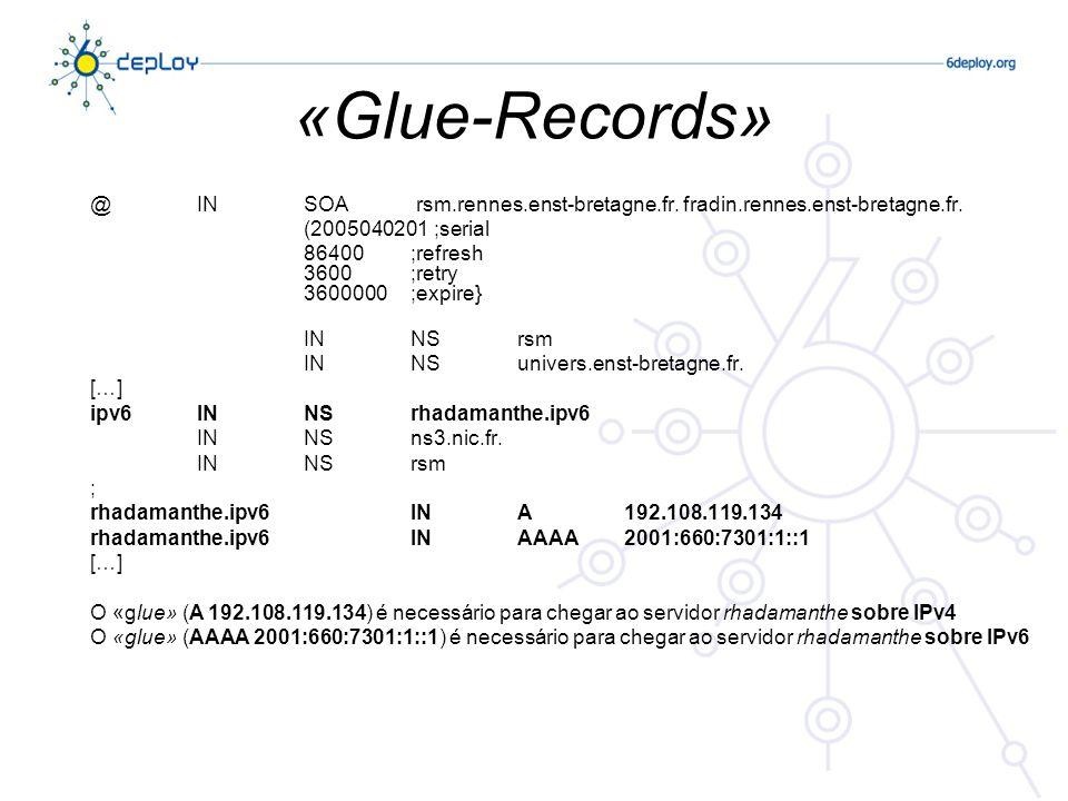 «Glue-Records» @INSOA rsm.rennes.enst-bretagne.fr.