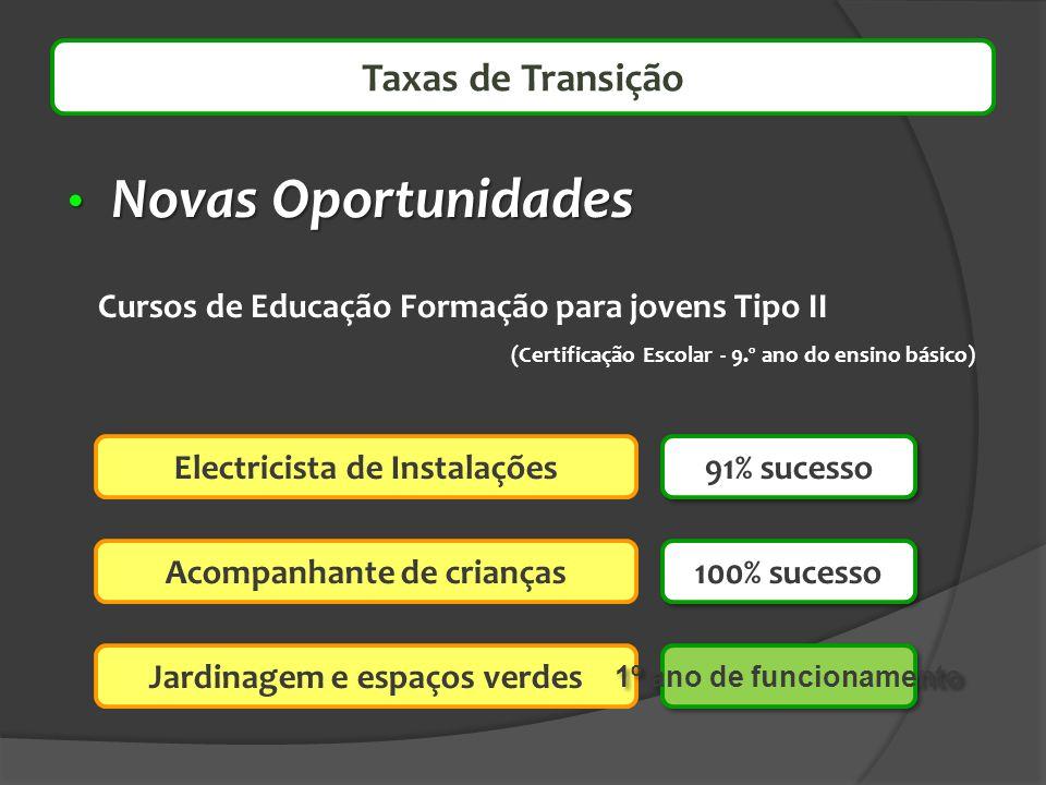 Novas Oportunidades Novas Oportunidades Taxas de Transição Electricista de Instalações Cursos de Educação Formação para jovens Tipo II (Certificação E