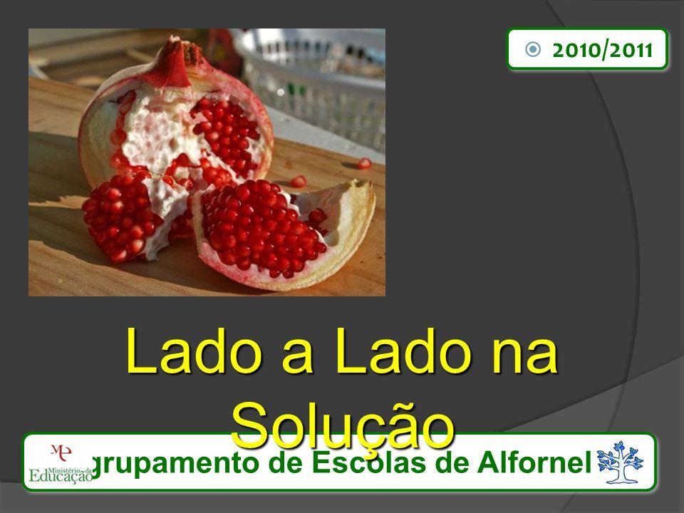 Agrupamento de Escolas de Alfornelos Lado a Lado na Solução 2010/2011