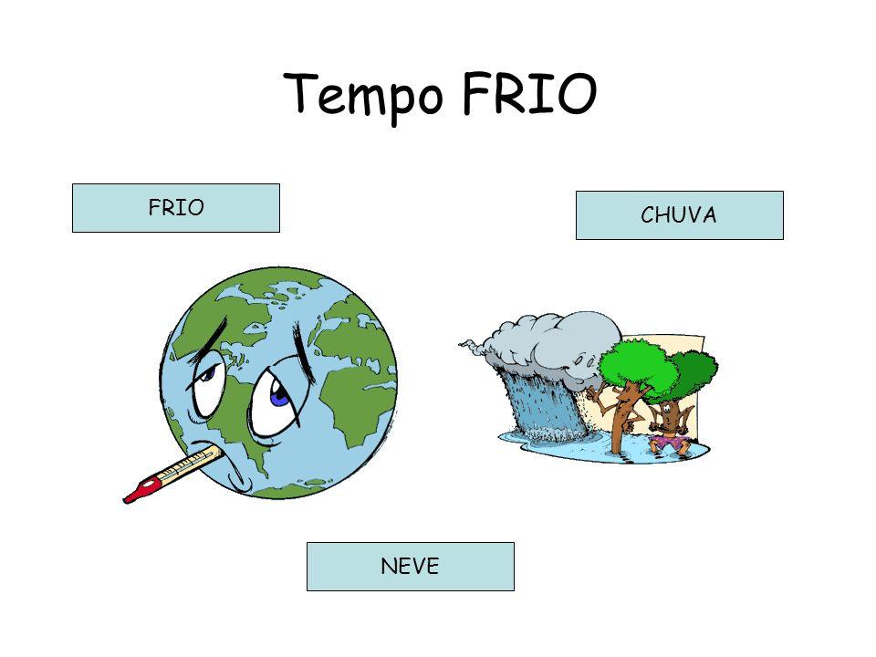 FRIO Tempo FRIO CHUVA NEVE