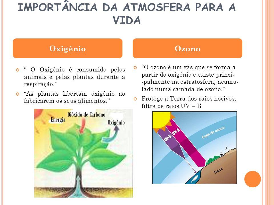 IMPORTÂNCIA DA ATMOSFERA PARA A VIDA O Oxigénio é consumido pelos animais e pelas plantas durante a respiração. As plantas libertam oxigénio ao fabric
