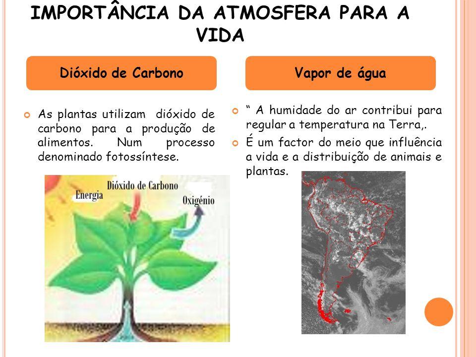 IMPORTÂNCIA DA ATMOSFERA PARA A VIDA As plantas utilizam dióxido de carbono para a produção de alimentos. Num processo denominado fotossíntese. A humi