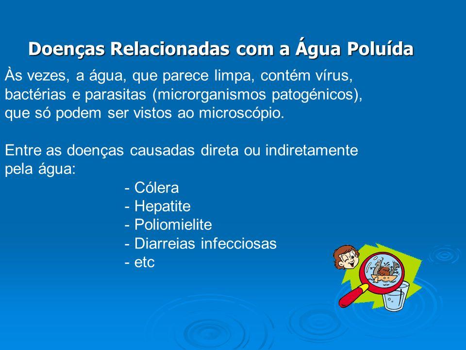 Doenças Relacionadas com a Água Poluída Às vezes, a água, que parece limpa, contém vírus, bactérias e parasitas (microrganismos patogénicos), que só p