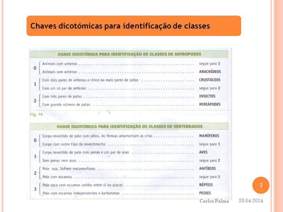 Fim 23-04-2014 8 Carlos Palma
