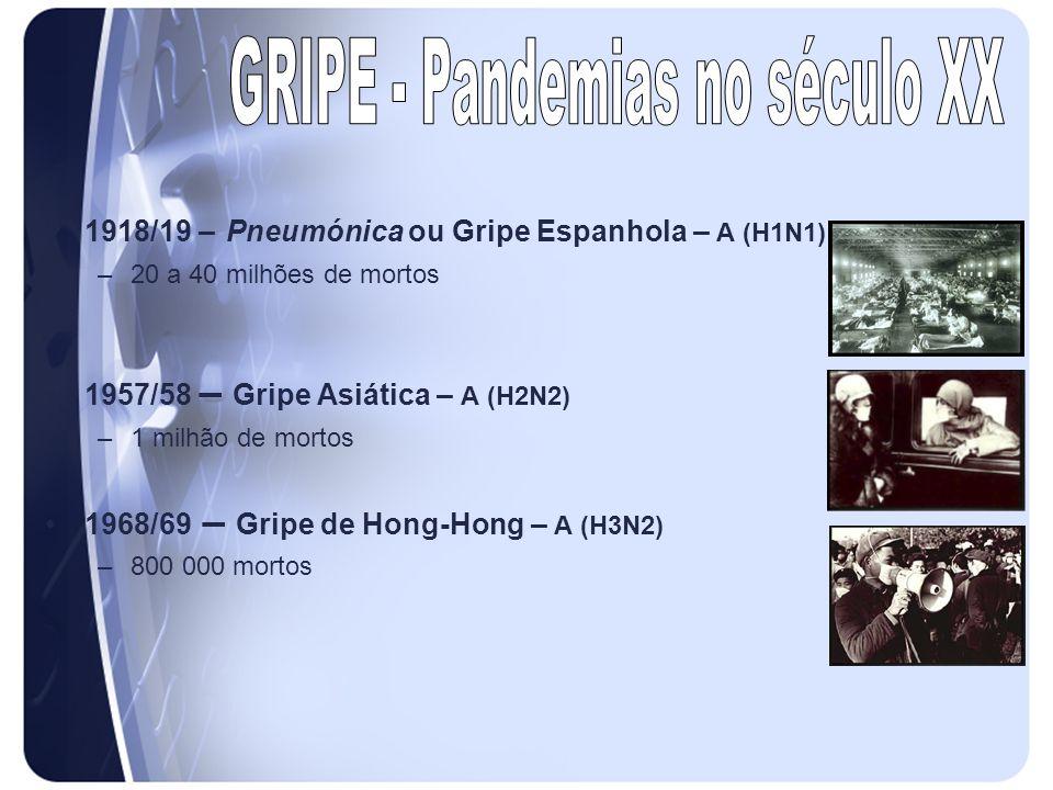 1918/19 – Pneumónica ou Gripe Espanhola – A (H1N1) –20 a 40 milhões de mortos 1957/58 – Gripe Asiática – A (H2N2) –1 milhão de mortos 1968/69 – Gripe