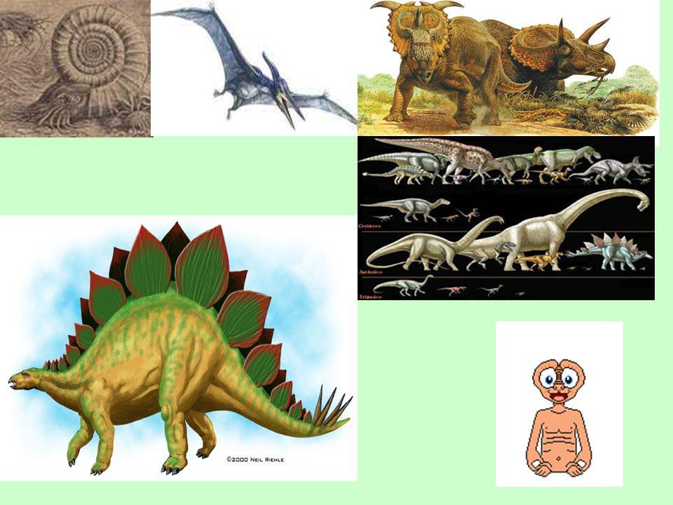 Maqueta da Era Geológica Mesozóico