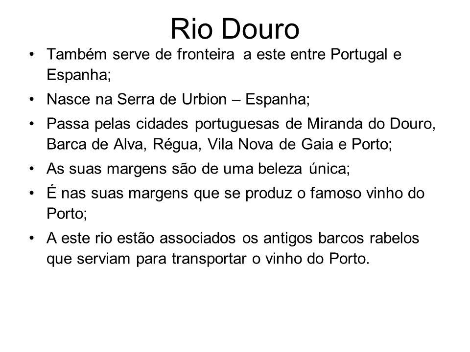 O Rio Douro na cidade do Porto