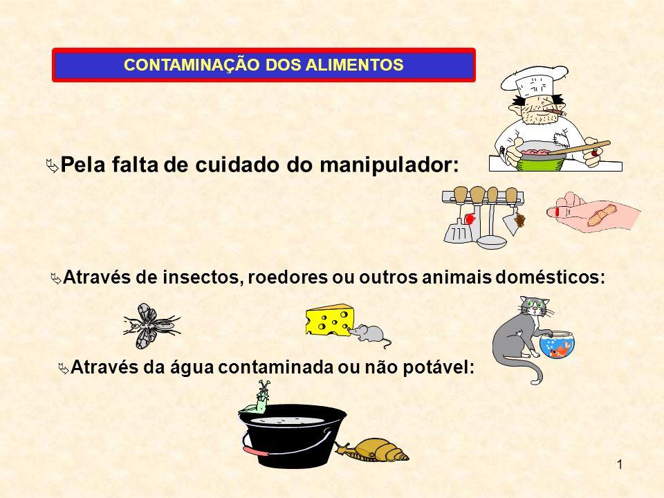 1 Pela falta de cuidado do manipulador: Através de insectos, roedores ou outros animais domésticos: Através da água contaminada ou não potável: CONTAM