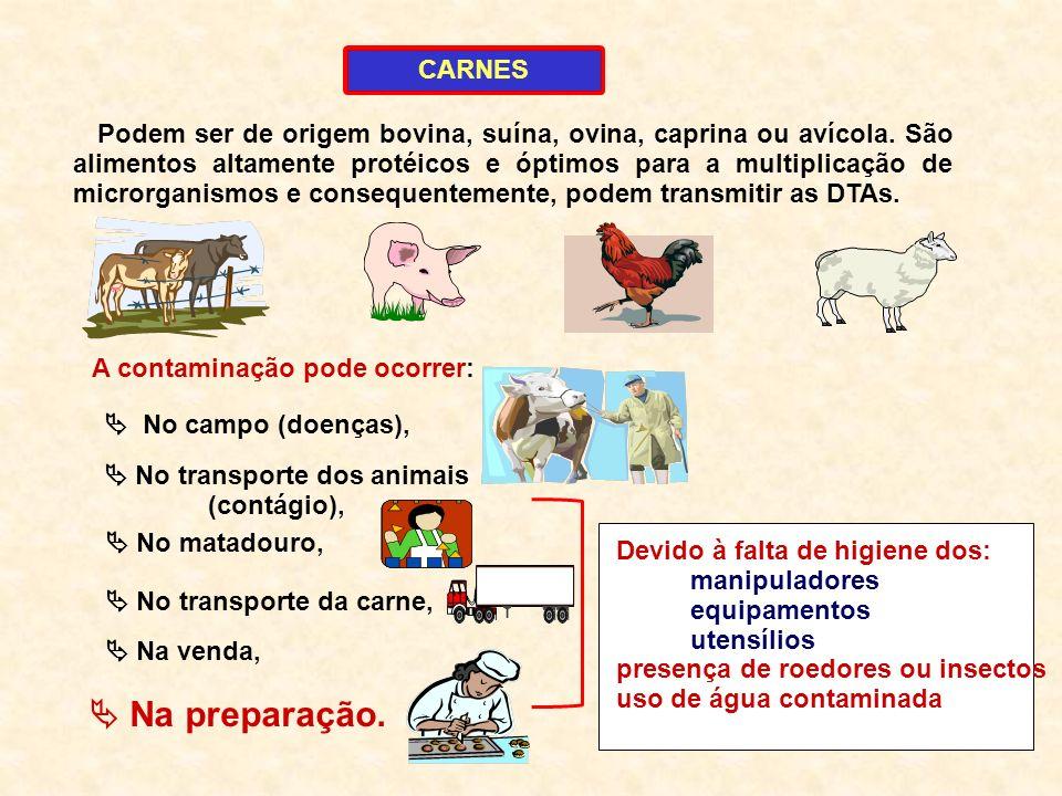 1 A contaminação pode ocorrer: CARNES Podem ser de origem bovina, suína, ovina, caprina ou avícola. São alimentos altamente protéicos e óptimos para a