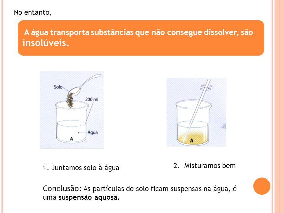 A água transporta substâncias que não consegue dissolver, são insolúveis. No entanto, 1. Juntamos solo à água 2. Misturamos bem Conclusão: As partícul