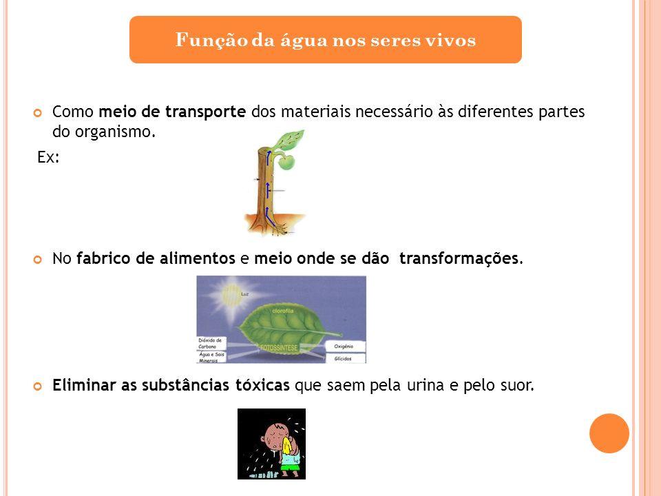 Como meio de transporte dos materiais necessário às diferentes partes do organismo. Ex: No fabrico de alimentos e meio onde se dão transformações. Eli