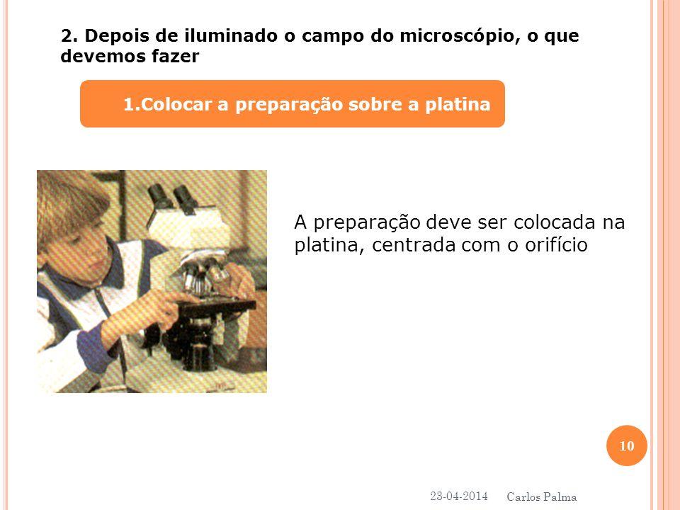 1. 1.Colocar a preparação sobre a platina 2. Depois de iluminado o campo do microscópio, o que devemos fazer A preparação deve ser colocada na platina