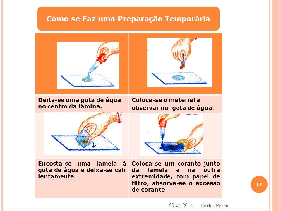 Como se Faz uma Preparação Temporária Deita-se uma gota de água no centro da lâmina. Coloca-se o material a observar na gota de água. Encosta-se uma l