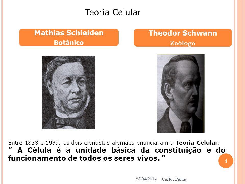 Mathias Schleiden Botânico Theodor Schwann Zoólogo Teoria Celular Entre 1838 e 1939, os dois cientistas alemães enunciaram a Teoria Celular: A Célula