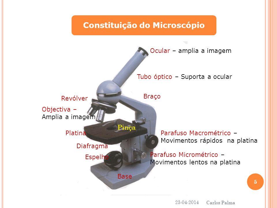Constituição do Microscópio Ocular – amplia a imagem Tubo óptico – Suporta a ocular Braço Parafuso Macrométrico – Movimentos rápidos na platina Parafu