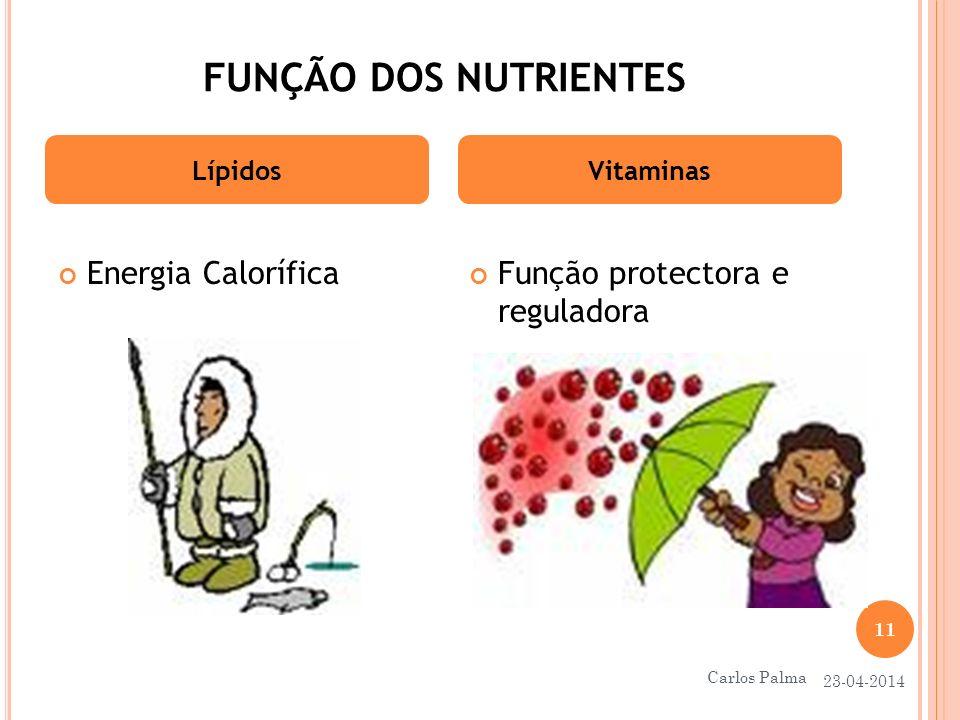 FUNÇÃO DOS NUTRIENTES Energia Calorífica LípidosVitaminas Função protectora e reguladora 23-04-2014 11 Carlos Palma