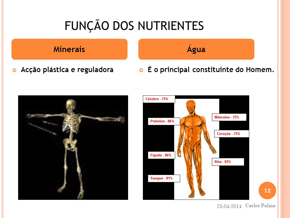 FUNÇÃO DOS NUTRIENTES Acção plástica e reguladora É o principal constituinte do Homem. MineraisÁgua 23-04-2014 12 Carlos Palma