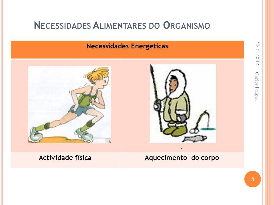 N ECESSIDADES A LIMENTARES DO O RGANISMO Necessidades Energéticas. Actividade físicaAquecimento do corpo 23-04-2014 3 Carlos Palma