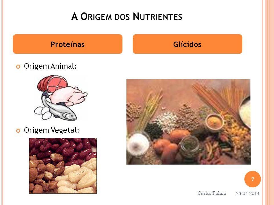 A O RIGEM DOS N UTRIENTES Origem Animal: Origem Vegetal: ProteínasGlícidos 23-04-2014 7 Carlos Palma