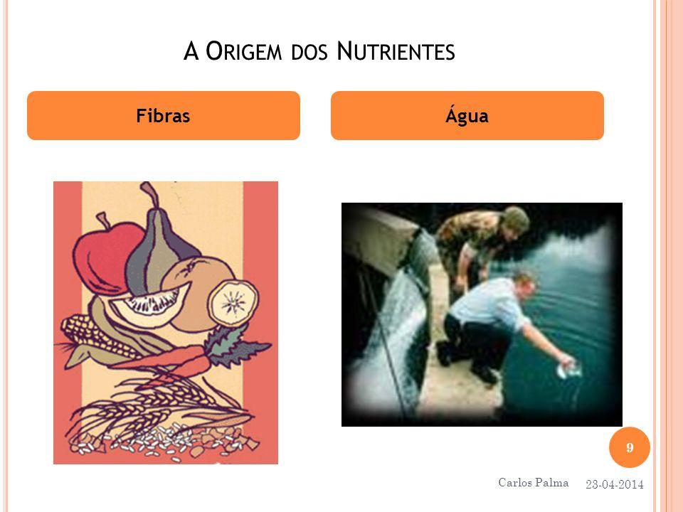 FUNÇÃO DOS NUTRIENTES Proteínas Hidratos de Carbono Construção e reparação das nossas células Fornecem energia 23-04-2014 10 Carlos Palma
