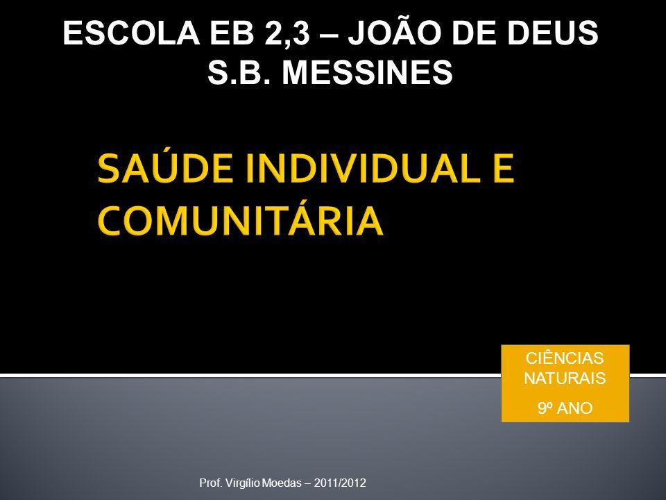 Prof. Virgílio Moedas – 2011/2012 ESCOLA EB 2,3 – JOÃO DE DEUS S.B. MESSINES CIÊNCIAS NATURAIS 9º ANO