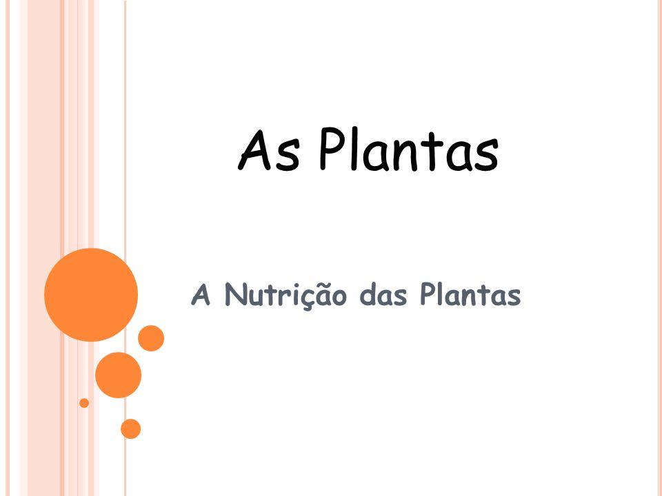 A Nutrição das Plantas As Plantas