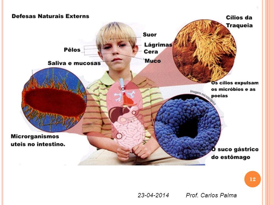 12 23-04-2014 Prof. Carlos Palma