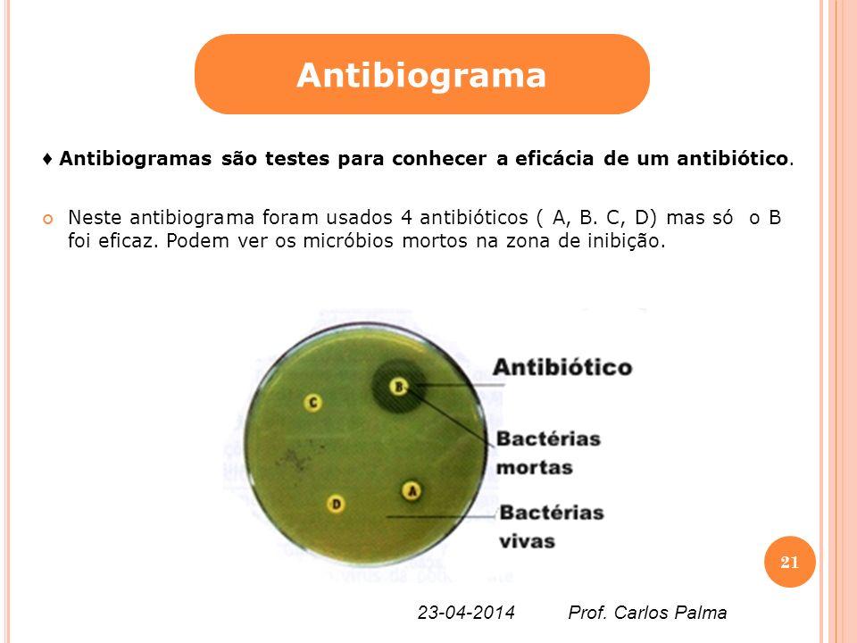 Neste antibiograma foram usados 4 antibióticos ( A, B. C, D) mas só o B foi eficaz. Podem ver os micróbios mortos na zona de inibição. Antibiograma An