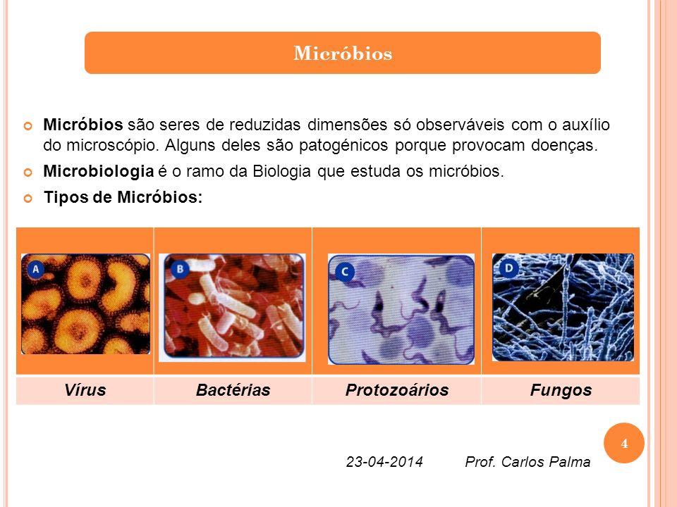 Micróbios são seres de reduzidas dimensões só observáveis com o auxílio do microscópio. Alguns deles são patogénicos porque provocam doenças. Microbio