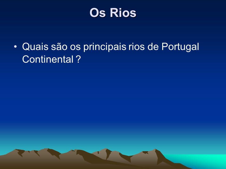Quais são os principais rios de Portugal Continental ?