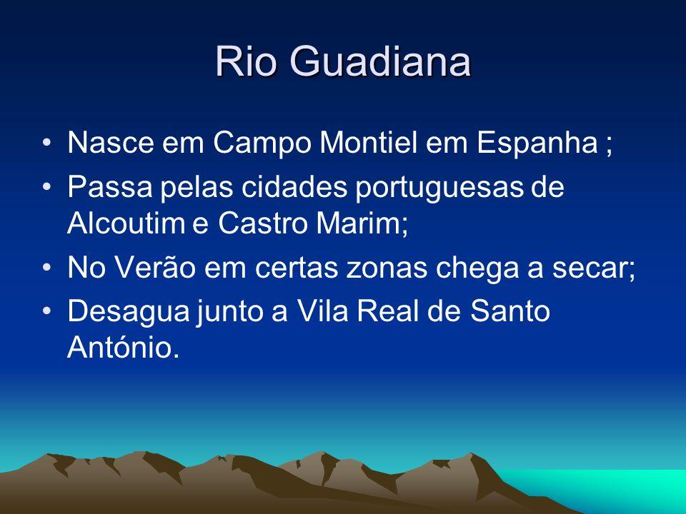 Rio Guadiana Nasce em Campo Montiel em Espanha ; Passa pelas cidades portuguesas de Alcoutim e Castro Marim; No Verão em certas zonas chega a secar; D