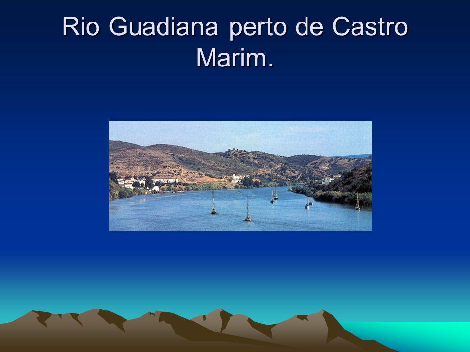 Rio Guadiana perto de Castro Marim.