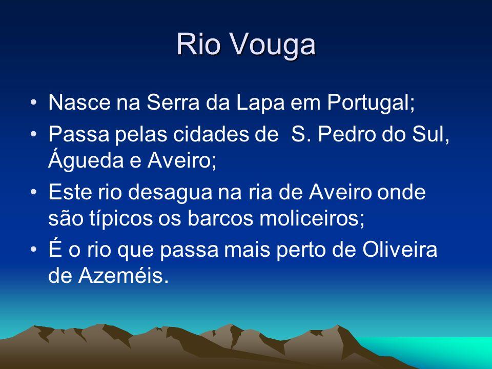 Rio Vouga Nasce na Serra da Lapa em Portugal; Passa pelas cidades de S. Pedro do Sul, Águeda e Aveiro; Este rio desagua na ria de Aveiro onde são típi