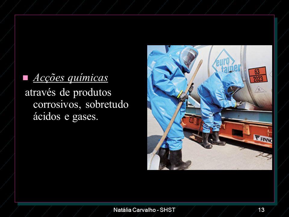 Natália Carvalho - SHST13 n Acções químicas através de produtos corrosivos, sobretudo ácidos e gases.