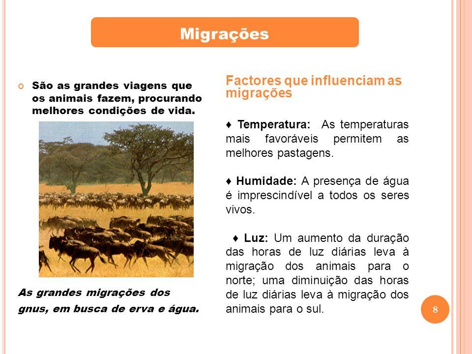 8 São as grandes viagens que os animais fazem, procurando melhores condições de vida.