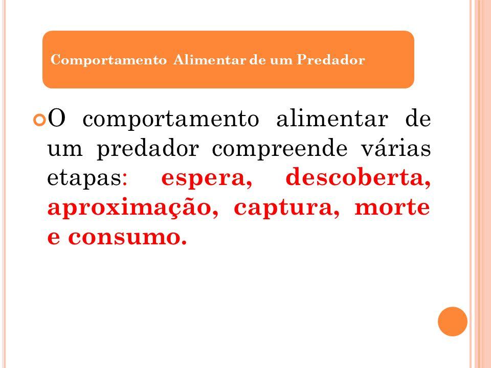 O comportamento alimentar de um predador compreende várias etapas: espera, descoberta, aproximação, captura, morte e consumo. Comportamento Alimentar
